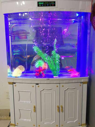 E家E缸 欧式鱼缸水族箱生态鱼缸亚克力底过滤中型金鱼缸客厅家用 象牙白 150cm标配套餐 (智能底滤送158) 晒单图