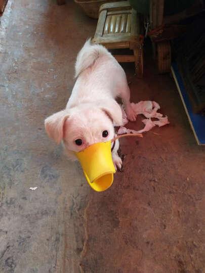 dogstory 宠物狗狗止吠器 鸭嘴套 硅胶材质 黄色 XL 晒单图