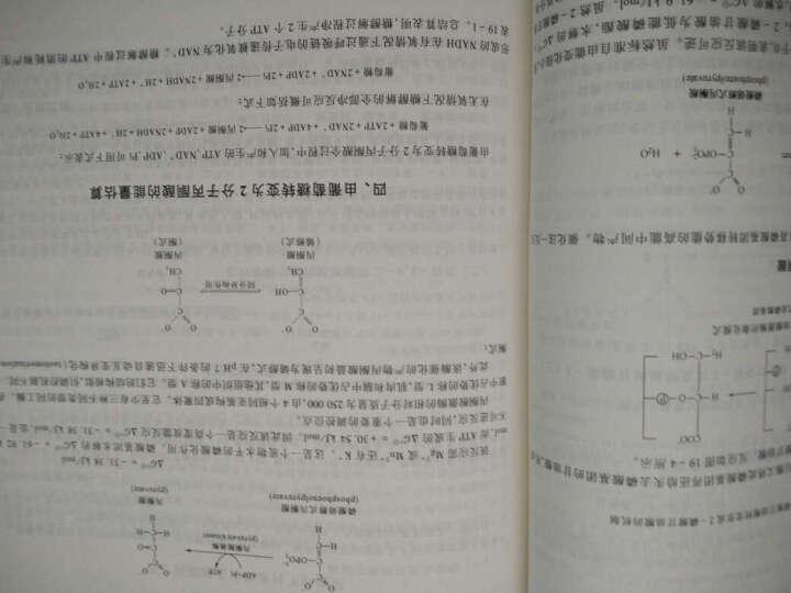生物化学教程 王镜岩 朱圣庚  高等教育出版社普通高等教育十一五国家级规划教材 晒单图
