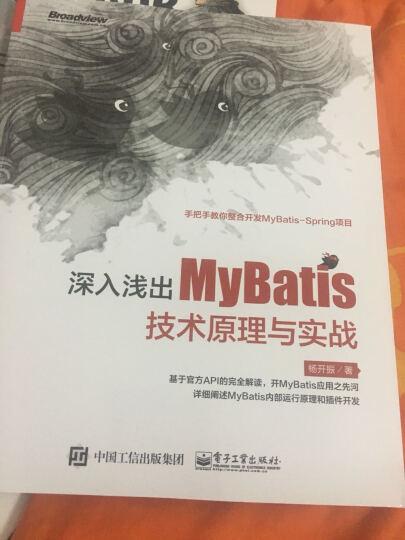 深入浅出MyBatis技术原理与实战 晒单图