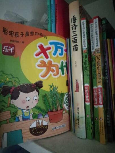 中华国学经典启蒙故事(有声伴读 套装共18册) 晒单图