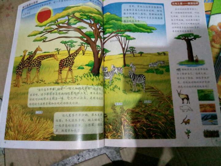 绕着地球跑一圈 世界之旅 自然之旅 中华之旅共3辑(套装18册)7-10岁科普百科绘本图书 晒单图