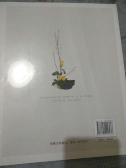 静香的花道生活:日式小原流花道技艺入门 晒单图