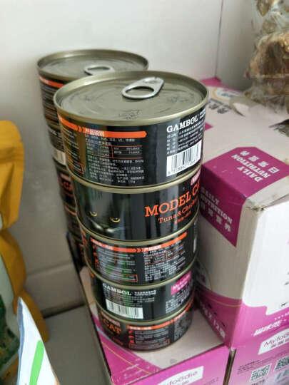 麦富迪模特猫罐头猫咪零食成猫幼猫猫湿粮猫咪恋泰国进口12罐 金枪鱼+鸡肉170g 晒单图