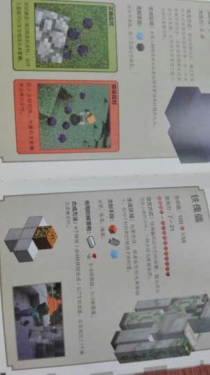 【官方正版】我的世界 热门游戏配套书 我的世界书 我的世界战斗指南 我的世界游戏攻略 晒单图