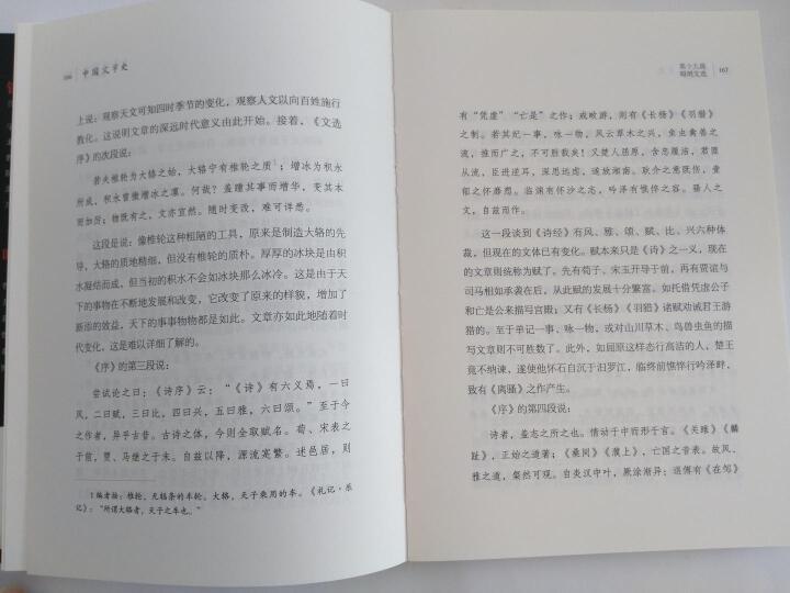 中国文学史  晒单图
