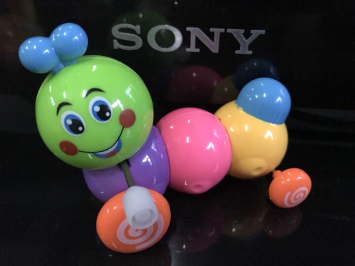 爱儿乐 宝宝玩具发条玩具婴儿玩具玩具小车小孩宝宝早教益智玩具1-3-6岁 敬业猫头鹰(颜色随机哦) 晒单图