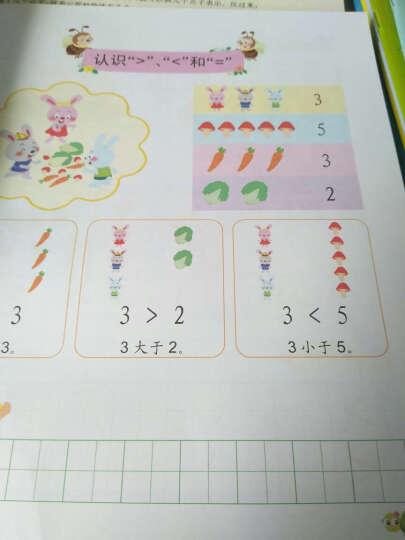 幼小衔接整合教材(数学2)数学1 识字拼音 同步练习12册 幼儿园学前班教材 晒单图