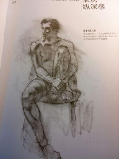 西方经典美术技法译丛 人体素描写生教程 晒单图