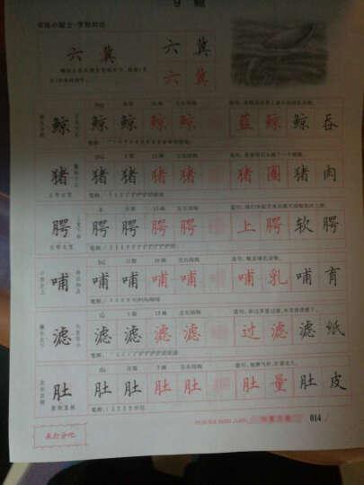 小学生写字课课练(人教版 五年级上) 晒单图