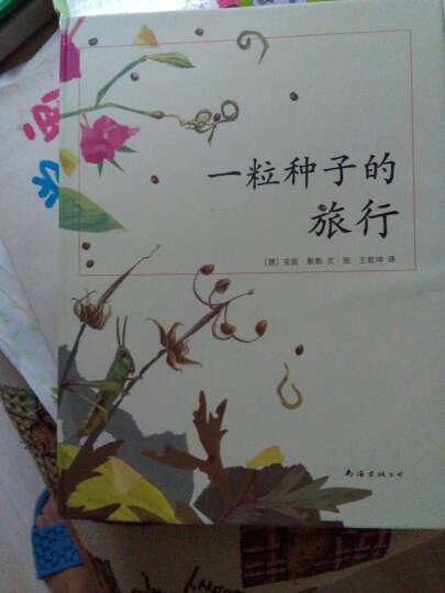 一粒种子的旅行 精装(德国儿童图书Luchs大奖)青少年儿童文学科普绘本 5-12岁小学生铜版纸 晒单图