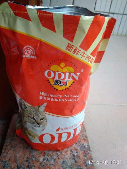 奥丁猫粮 幼猫粮成猫粮天然猫粮 猫主粮500g 鱼肉味 晒单图