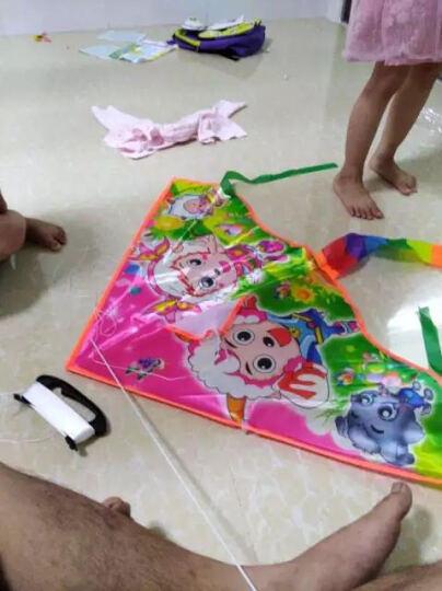 潍坊风筝户外玩具新款空白填色风筝DIY手工风筝儿童绘画风筝包邮 大号+50米板+6色颜料+1只笔+调色盘 晒单图