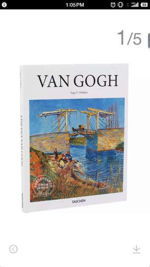 Van Gogh 梵高 绘画艺术作品集 画集 英文原版 荷兰画家 后印象派大师 晒单图