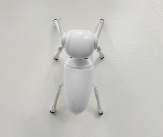 DFRobot 虫虫机器人 智能机器人拼装玩具 无线遥控教育机器人套件 机器人礼物 晒单图