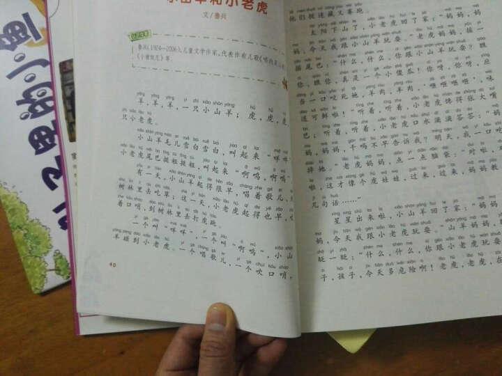 窦桂梅 影响孩子一生的主题阅读:小学1-2年级(套装共2册) 晒单图