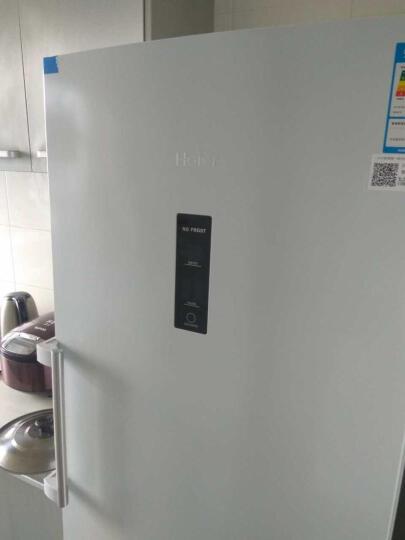 海尔(Haier)冷柜立式冷冻冰柜 家用冷冻冰柜 无霜风冷智能控温 深冷速冻 一级节能BD-226W 晒单图