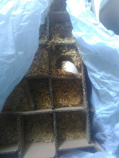 【宜昌农特产馆】蛋之语 无公害散养土鸡蛋20枚装净重900g柴草笨新鲜 晒单图