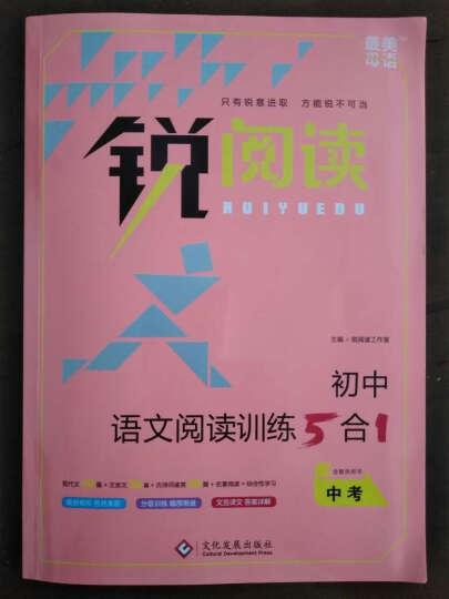 初中语文阅读训练5合1 中考 晒单图
