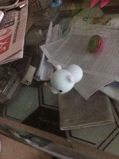 日本可爱萌萌创意礼物小海豹君发泄减压捏捏乐公仔小萌宠 小绵羊 5cm左右 晒单图