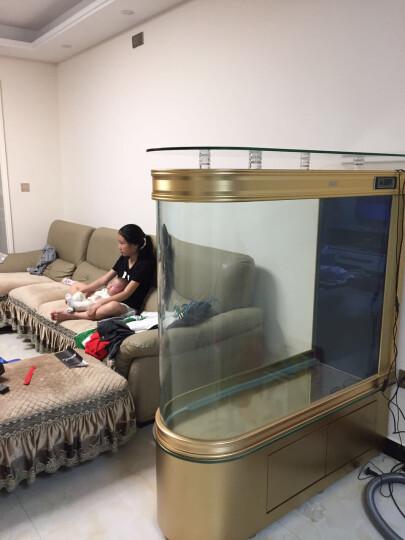 德国德克子弹头吧台鱼缸水族箱中型客厅家用玻璃免换水屏风隔断大型生态金鱼缸定制带鞋柜 金色开门款 长120-宽45-102cm高缸+高40烤漆柜 晒单图