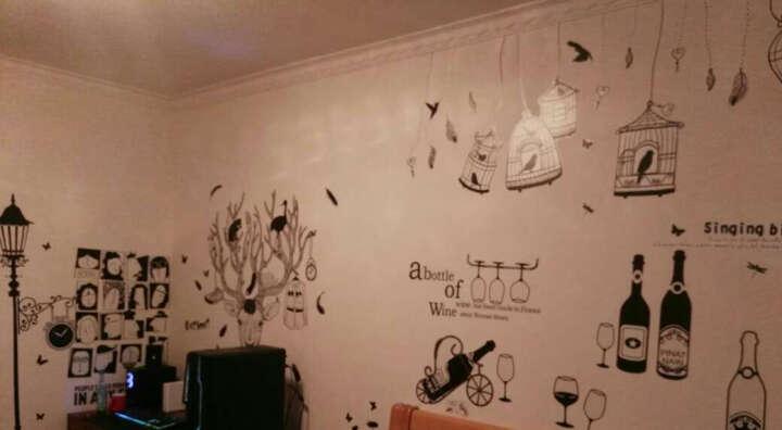乐宅 时尚个性墙贴纸贴画 创意客厅沙发电视背景墙贴纸 走廊玄关装饰贴画 G款MM6010欢快的鸟笼X6-1-1 特大号 晒单图