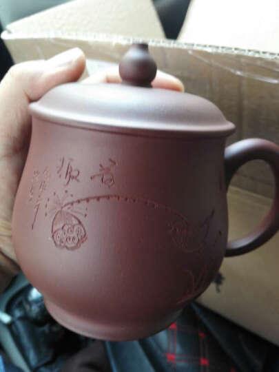 红青百年 宜兴原矿紫砂花鸟葫芦盖杯 紫砂茶杯 茶具 泡茶杯 晒单图