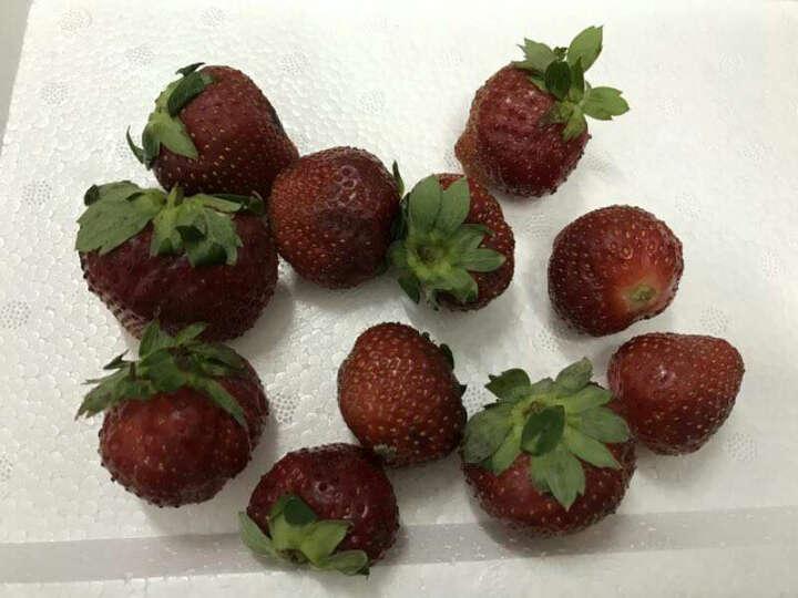 丰德临 草莓3盒(350g/盒)红颜牛奶草莓京东生鲜新鲜水果 晒单图