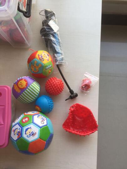 费雪牌fisher price动物认知球婴儿手抓球摇铃球铃铛球捏捏球婴儿玩具球布球 黄蓝装+布球足球 晒单图