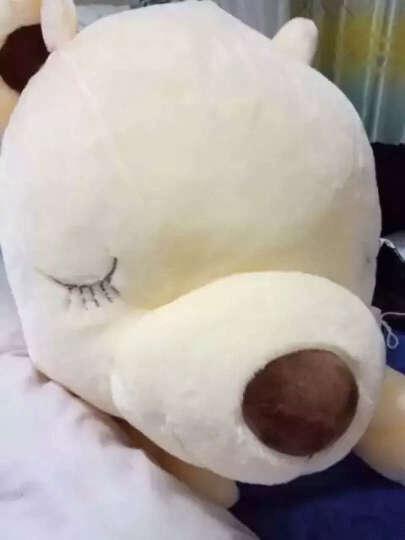 魔法龙 可爱趴趴熊大号泰迪熊公仔抱抱熊毛绒玩具大熊猫布娃娃玩偶睡梦熊狗狗抱枕公仔靠垫 碎花色衣服-趴趴熊 90厘米 晒单图