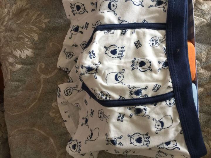 红豆(Hodo)儿童内裤男平角中腰透气中大童95%棉舒适四角裤3条盒装HDK773花色140 晒单图