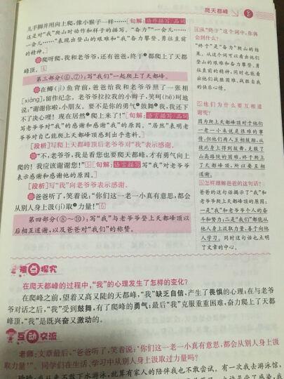 人教版教材解读数学+人教版教材解读语文+人教版教材解读英语(三年级上册 套装共3册) 晒单图