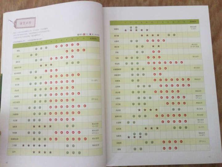 种子变花园:阳台园艺全攻略(附送美乐棵肥料) 晒单图
