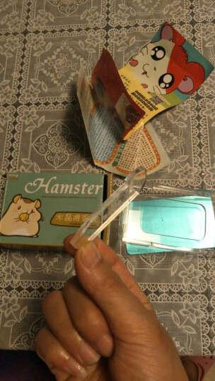 一口米 宠物小仓鼠夏天降温用品冰盒散热板凉板消暑窝冰床大理石冰袋凉席 套餐[凉垫大号+木框架+冰袋] 晒单图