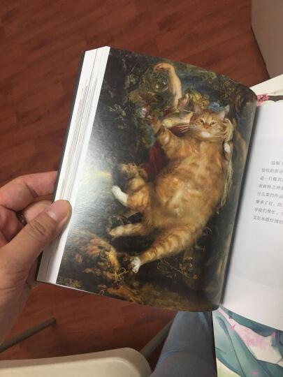 肥猫艺术课:有猫的名画才是真迹,你们人类不懂艺术! 晒单图