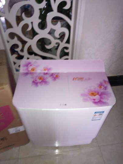 樱花(SAKURA) XPB35-35S 迷你洗衣机小型儿童宝宝脱水双缸双桶半自动甩干桶 粉红色 晒单图