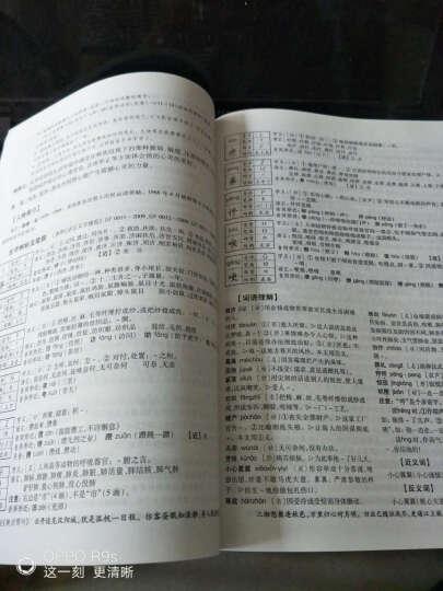 怎样学好小学语文 新课标 六年级 上册 北师版 课程辅导篇+课程测试篇 附详解答案 晒单图