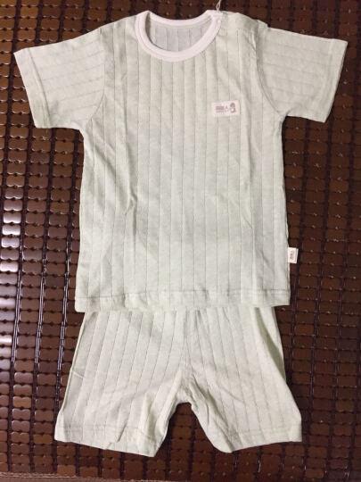 南极人(Nanjiren)【8款可选】新生儿短袖套装婴儿夏季衣服宝宝T恤背心短裤两件套 背心-信鸽 73CM(建议6-12个月,16-20斤宝宝) 晒单图
