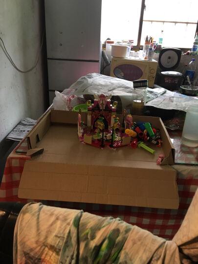 星钻积木海底小纵队积木拼装儿童玩具益智6-7-8-10周岁男孩女孩 【呱唧、皮医生】毒箭蛙的栖息地 晒单图
