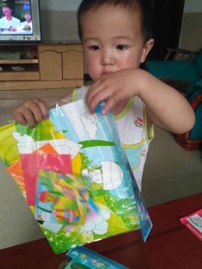 那些花儿(TFLOWER) 那些花儿EVA手工制作立体贴画儿童DIY创意粘贴画系列玩具 YY下系列20张R3302 晒单图