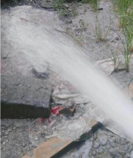 家用污水泵排污泵泥沙泵泥浆泵潜水泵家用抽化粪池抽水机 1100W WQD10-15-1.1(人民款) 晒单图