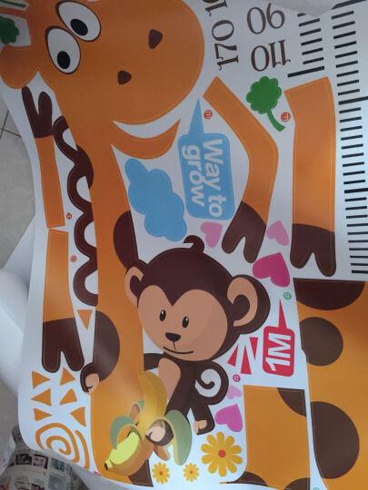 缔卡(dktie) 可移除儿童房身高尺墙贴宝宝卧室墙壁贴纸卡通动物身高贴墙贴画 快乐小兔 大 晒单图