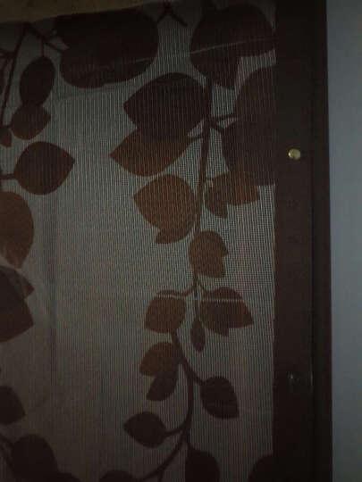 【送2包粘扣】防蚊门帘纱窗 免穿磁条门沙刺绣加密磁性软纱门 单车绿色 100x210 晒单图