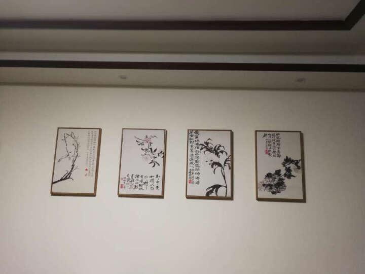 舒居宝装饰画新中式客厅挂画餐厅玄关壁画石涛国画 N菊花 40*60CM深木纹框 晒单图