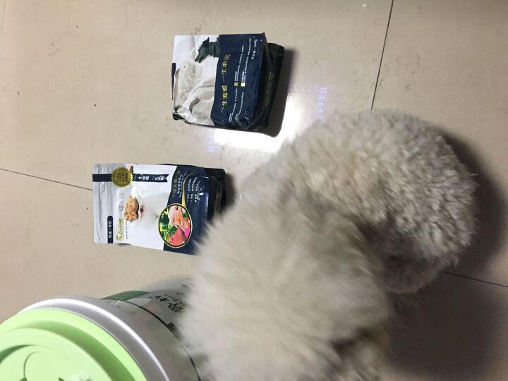 呈诺狗粮帅克出品天然鲜肉粮鸭薯养胃配方美毛亮毛泰迪比熊柯基博美小型犬成犬粮包邮 0.5kg*10袋 晒单图