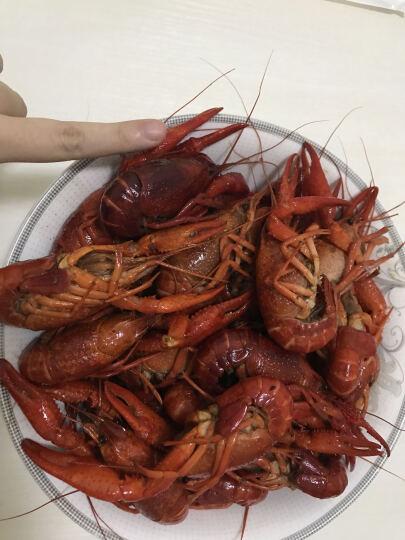 初辰 小龙虾熟食净虾1kg 十三香4-6钱2kg34-50只 晒单图