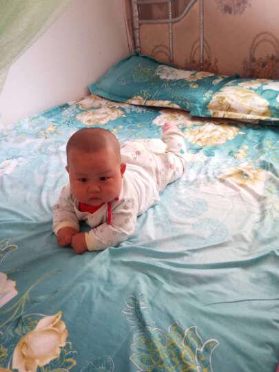 淘京家纺床单床品双人单件被单宿舍活性单双人床单 J永久的爱 230*230cm+一对枕套 晒单图