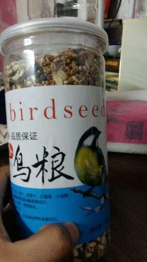 洁西 虎皮鹦鹉文鸟鸟食饲料 牡丹玄凤粮食鸟粮 600g  晒单图
