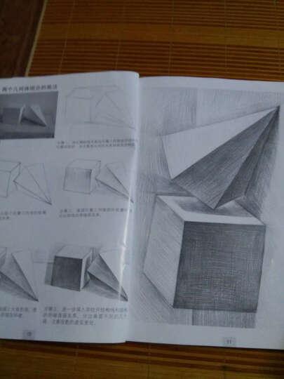 美术入门基础教程:素描起步 晒单图
