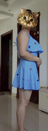 舒默(SHUMO) 泳衣女连体裙式修身遮肚显瘦游泳衣女士平角保守大码温泉沙滩度假泳装 蓝色条纹 L(建议104-120斤) 晒单图